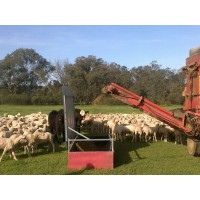 Valton Sheep Feeder